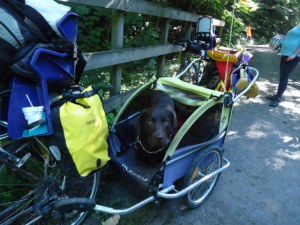 Mit Hund und Kindern auf dem GAP Bike Trail